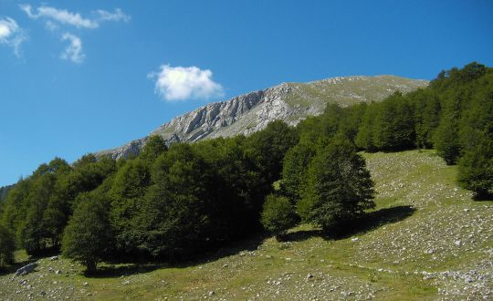 Nationale Park Il Pollino