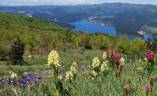 Wandelen door het nationale park Sila