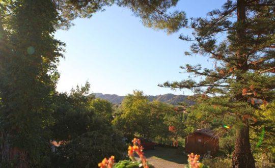 Leuke zomerfestivals in Calabrië